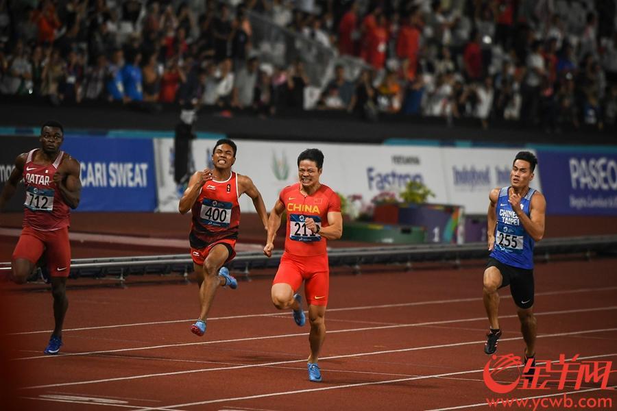 亚运会男子100米决赛苏炳添以9秒92的成绩破赛会纪录夺冠。 金羊网特派记者 周巍 摄