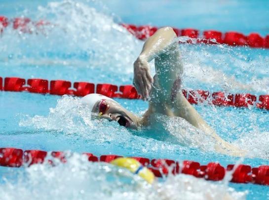 游泳世锦赛:男子200自由泳孙杨晋级决赛